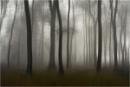 The Far Side by MalcolmM