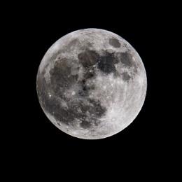 Wolf Moon 1-1-2018