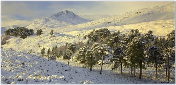 View Point. Glen Affric by ianblanchett