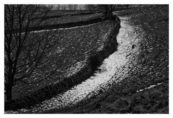 The snow lingers by notsuigeneris