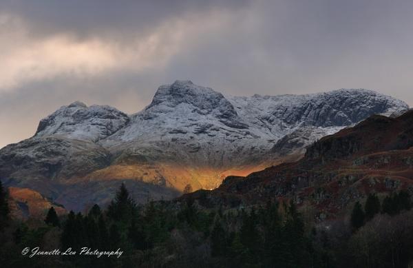 Snow & Light by janlea