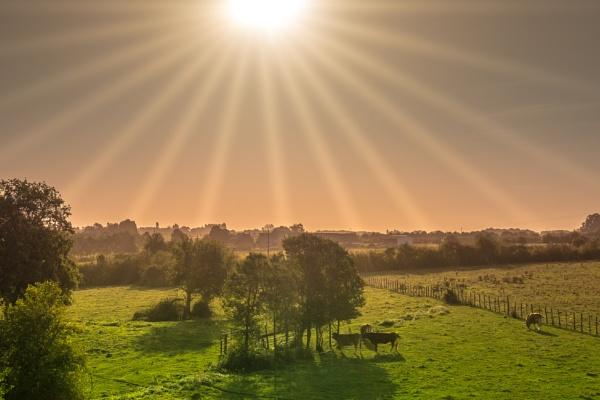 French Farm by jackshot