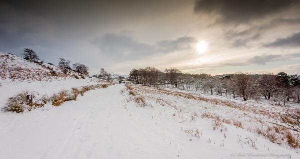 Snow by kojak