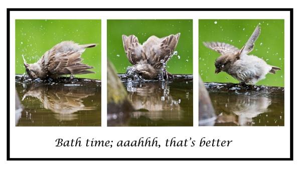 Bath time by DavesWork