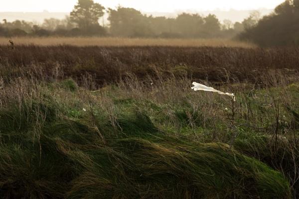 Spoilt landscape by Madoldie