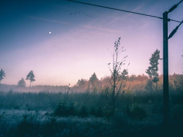 peace.. by KatrineJ