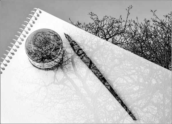 Scribbles by BlueRoom