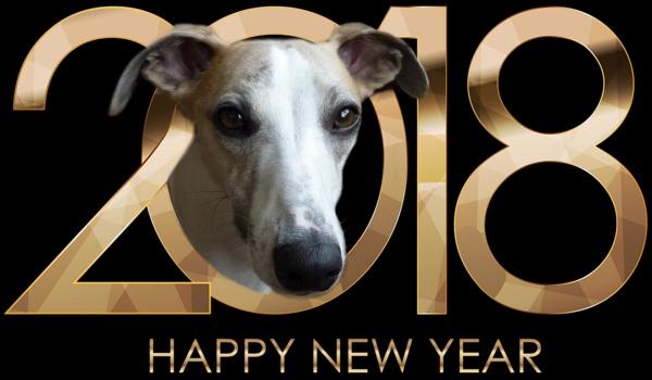 Happy 2018 folks by BarbaraR