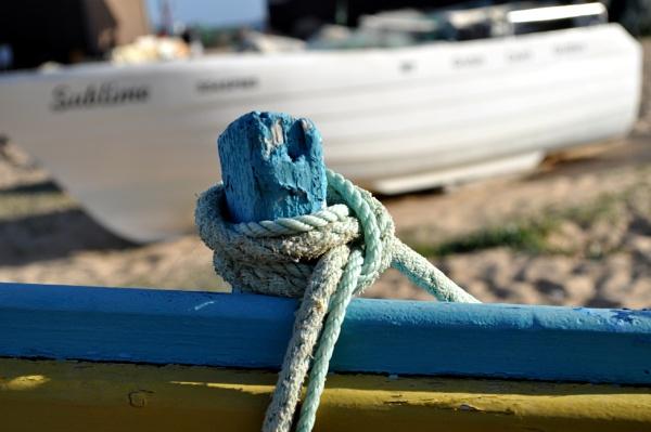 """Thursday\'s \""""Boatabilia\"""" by Chinga"""