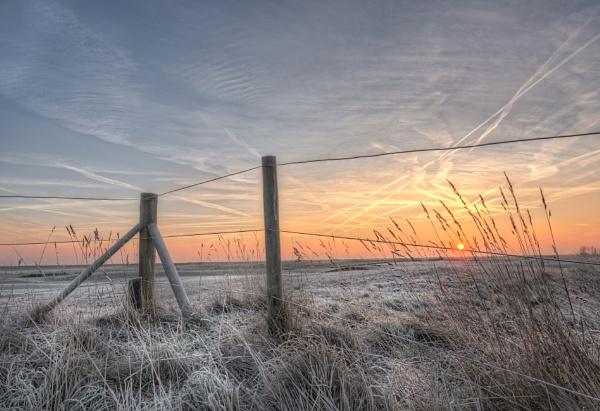 early frost by carper123