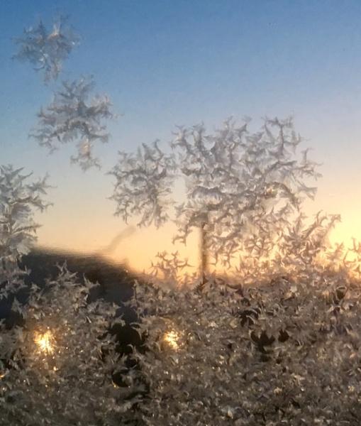 Window Frost by fragile