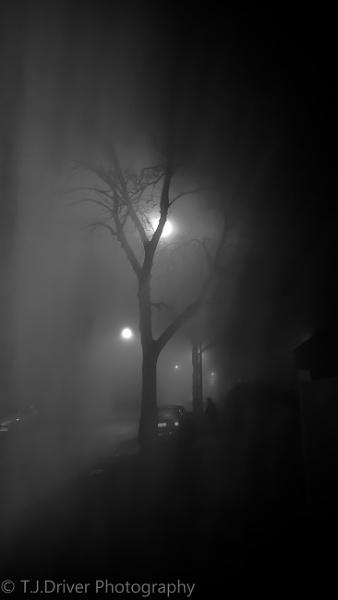 Fogy Night by TelD