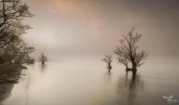 Lough Neagh shore by PMWilliams