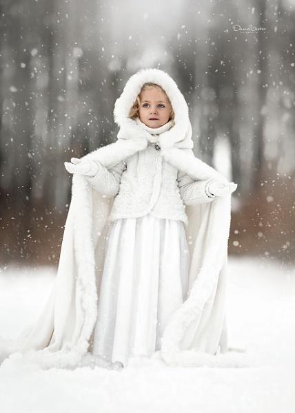 Snow Dreams by DVfoto