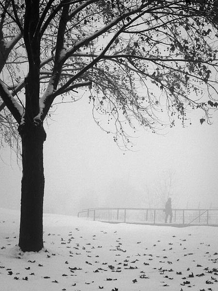 Winter scene by LaoCe