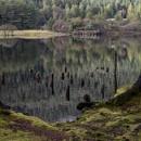 Loch Eck by Hazelmouse
