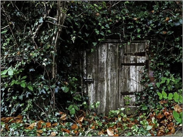 Hidden by woolybill1