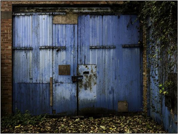 Blue by woolybill1