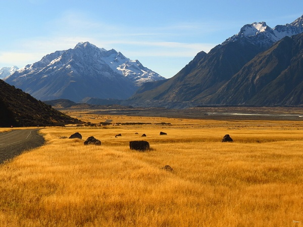 Mt Cook NP 33 by DevilsAdvocate
