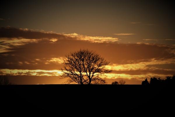 Winter Sunset by magsyuk