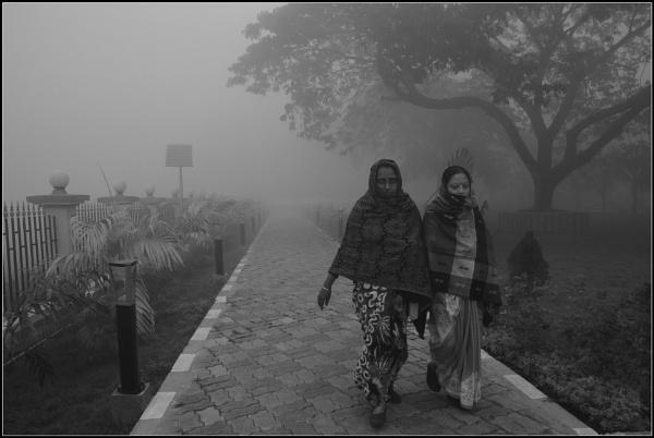 A quite foggy dawn...