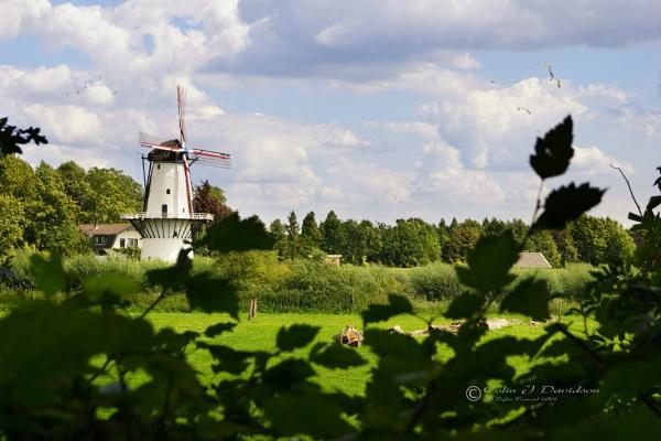 Enspijk Mill by colijohn