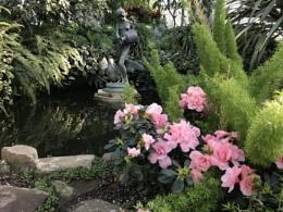 Allen Garden