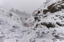 Snow Day by Trevhas