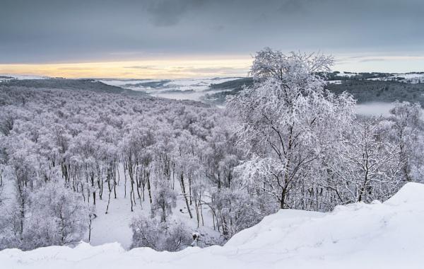 Snow Blanket by Trevhas