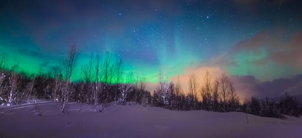 Aurora Beginning