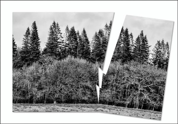 Lightning Strike by BlueRoom