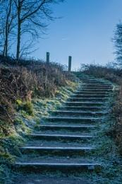 Cold steps