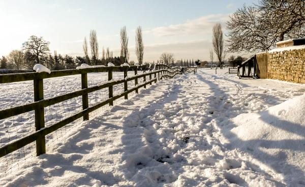 winter snow by jimlad