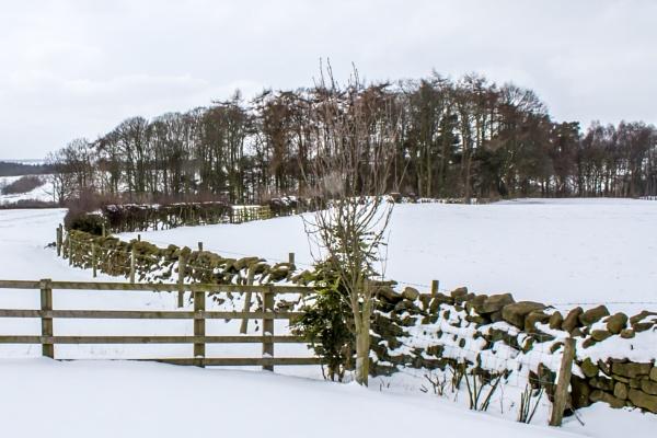 Yorkshire snow by jimlad