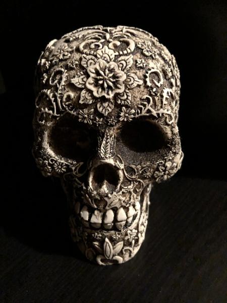 Skull by NikitaMorris