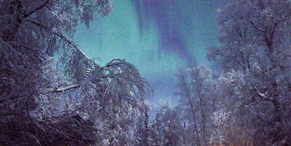Frosty Morning Auroras by Rebeak