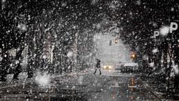 Winter Scene XXV