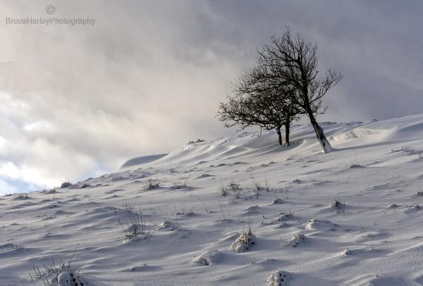 Drifting by MunroWalker