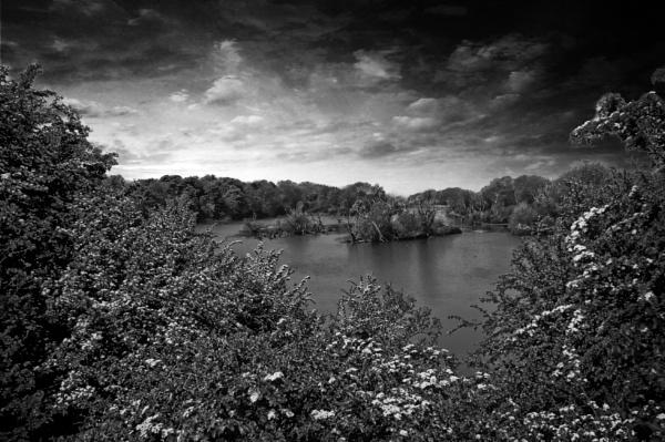 lady of still lake by m111mmh
