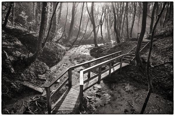 Footbridge over Mill Stream by Owdman