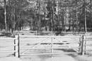 Snow Gates by MalcolmM