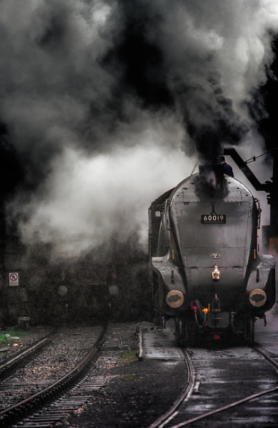 Age of Steam by chris-p