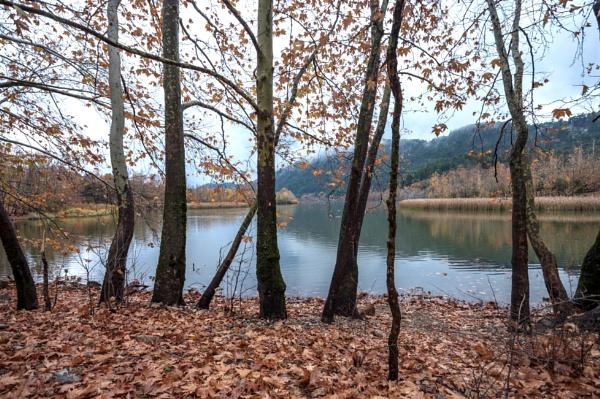 Autumnal Colours of Lake Kovoda