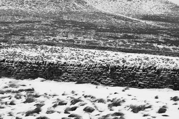 Layered Landscape by Trevhas