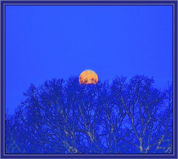 nesting super moon by estonian