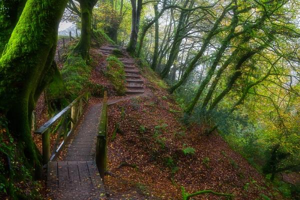 Lydford Gorge by Les_Cornwell