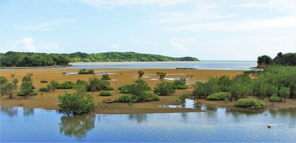 JAPAN - Coastal Landscapes No.66 by PentaxBro