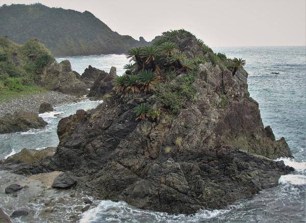 JAPAN - Coastal Landscapes No.49 by PentaxBro