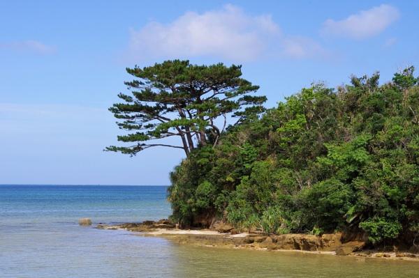 JAPAN - Coastal Landscapes No.89 by PentaxBro