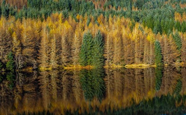 Argyll autumn
